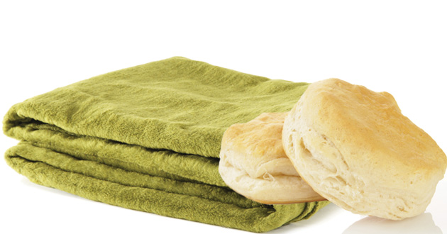 Photo of Just a biscuit and a blanket