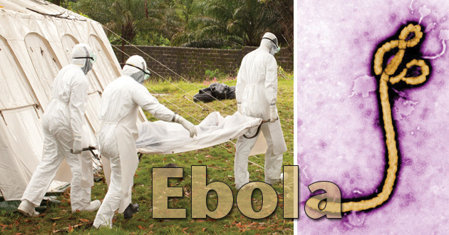 Photo of What should we know about Ebola?