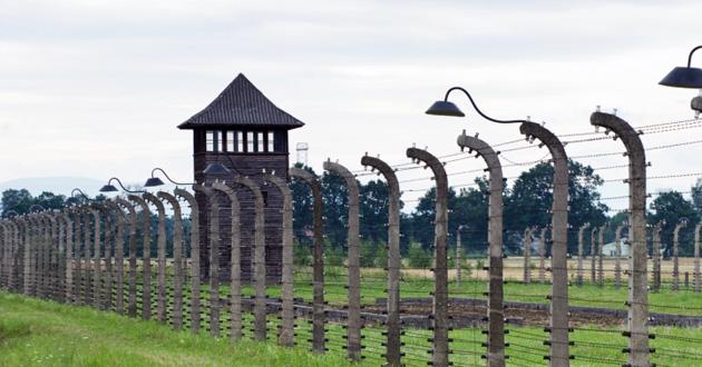 Photo of Auschwitz survivor: Being alive is best 'revenge'